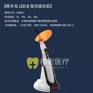啄木鸟LED.B型光固化机